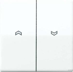 Jung Wippe Symbole aws für Taster AS 591-5 P WW