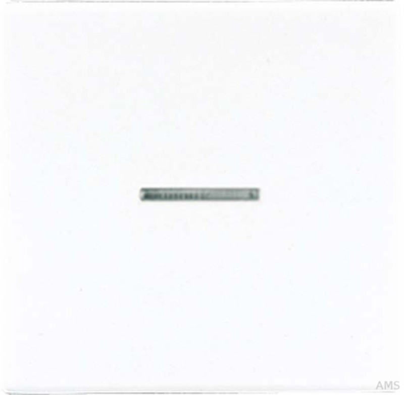 jung wippe lichtleiter aws f r schalter taster ls 990 ko5 ww. Black Bedroom Furniture Sets. Home Design Ideas