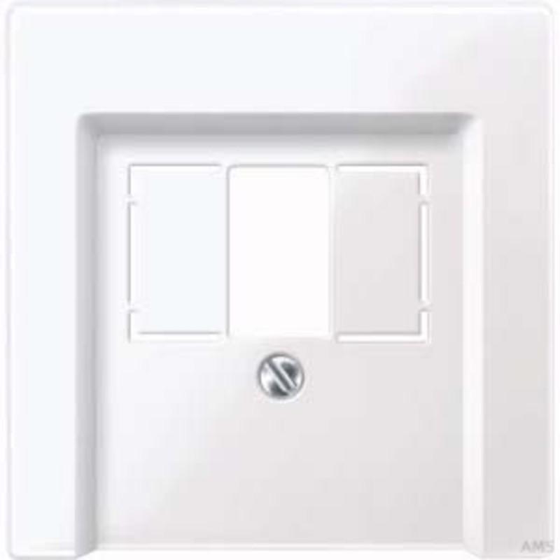 merten zentralplatte aws gl f r anschlussdose 296025. Black Bedroom Furniture Sets. Home Design Ideas