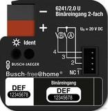 Busch-Jaeger Binäreingang 2-fach UP 6241/2.0 U