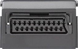 Gira Scart/Euro-AV-Buchse 009300