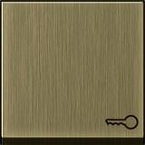 Gira Wippe Symbol Schlüssel brz System 55 0287603