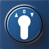 Gira Zentralpl. Schlüssel. bl S-Color 066446