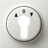 Gira Zentralpl. Schlüssel. rws S-Color 066440