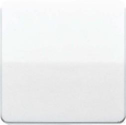 Jung Kurzhubtaste gold brz für Einsatz CD 1561.07 GB