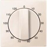 Merten Zentralplatte für Zeitscha lter-Einsatz 120 min 539244