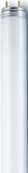 Radium Leuchtstofflampe ws NL-T8 18W/840/G13