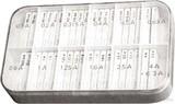 Scharnberger+Hasenbein Sicherungssortiment 4 F 5x20 200 Feinsich. 60600